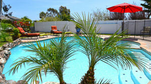 Carlsbad Vacation Rental With Pool Near Legoland – Carlsbad Cali