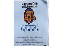 Dog lover Dog sitter and Dog walker Mansfield and surrounding areas
