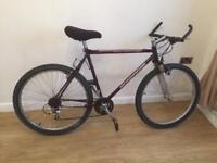 Mongoose adults mountain bike