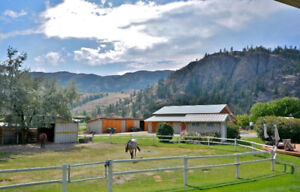 12.28 acres of horse paradise outside Oliver