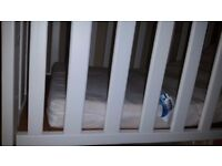 baby cot with mattress for free