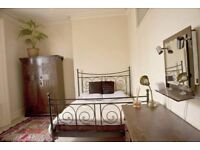 Fantastic room in extra large flat - flatshare with one more person