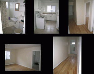 For Rent: Two bedroom apt on Main Avenue Halifax
