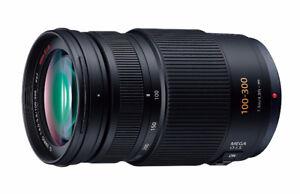 Panasonic Lumix G Vario 100-300mm F/4.0-5.6 OIS Lens
