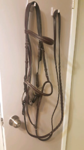 Fancy hunter bridle