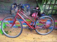 Apollo CX10 Bike Ladies Red/Burgundy