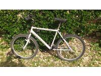 Raleighs bike, 27.5 inch wheels, 20 inch frame.