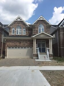 Brand New 3 BR House Available for Lease in Cambridge For $1800