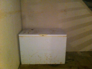 Deep freezer for sale still works great! $50 OBO