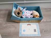 Baby Oleg meerkat