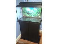 marina fish tank, 24 x 15 x 12 with cabinet, hood, light etc, full setup.