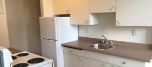 Two Bedroom Suites Hi Level Place for Rent - 11005 98 Avenue NW