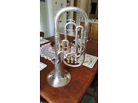 Baritone horn (Euphonium)