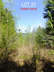 Building Lot in Shuswap Lake Estates