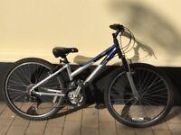 Giant Rock Women's Mountain Bike Silver and Blue XS size