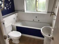 Bathroom suite free from fair oak