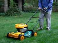 LOOKING FOR EXPERIENCED LAWN CUTTER AVAILABLE TOMORROW!
