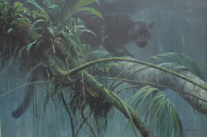 """Shadow of the Rainforest"" Premier Edition Set Robert Bateman"
