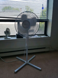 Moving Sale : fan $15