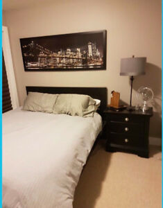 Looking for Young Professional - 1 Bedroom with Ensuite