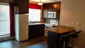 Rossland 1 bedroom condo available September 1st