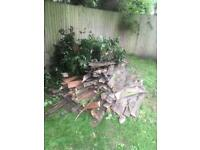 Wood from a fence (FREE)