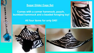 Toys and Cage Sets for Sugar Gliders, Rats and more!