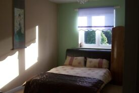 Large Double Room in Modern Flat