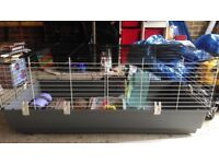 large indoor small animal cage