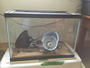 Glass reptile cage with lights