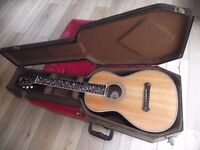 ALL SOLID WOOD WASHBURN R321SWRK PARLOUR WITH HARDCASE