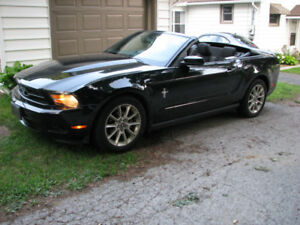 2010 Ford Mustang V6 Convertible-Safetied and CarProof Available