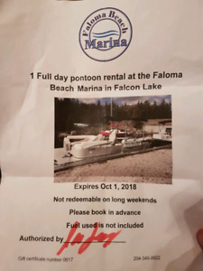full day pontoon rental at Falcon Lake