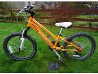 Ex hire Merida Dakar 20in wheel kids child bike