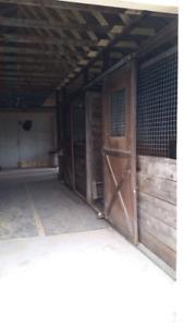 Farm Barn stall doors 4x8