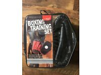 Boxing Training Set - Two Focus pads & Gloves