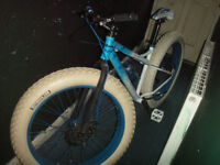 for sale this fat man bike adults