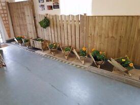 Wheel barrow planters for sale