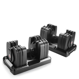 Bowflex 560 dumbells + Stand