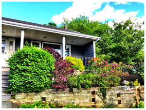 Charming and Bright home on Waverley Road Close to Shubie park