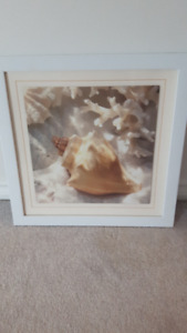Framed Conch Shell Picture-OSOYOOS