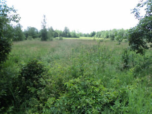 ******REDUCED******PERFECT FOR HOBBY FARM OR DREAM HOME