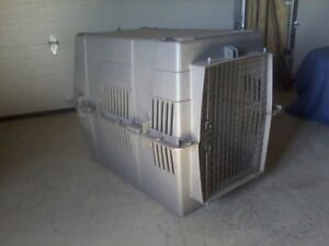 1 large dog kennel and one kennel jacket for sale