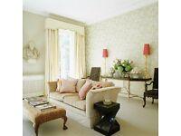 Experienced Cleaner seeks work in Kensington/Westminster