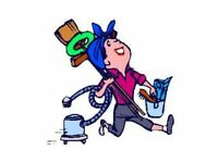 Experienced Domestic Cleaner Looking for Work