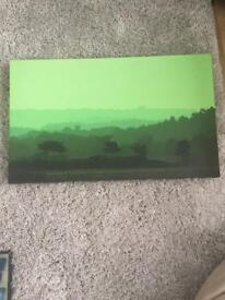 Green countryside picture