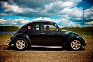 1961 Beetle For Sale (Price Reduced!)