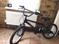 Kids BMX (British Eagle BMX)