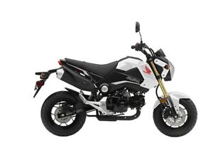 A lightly used, unmodified Honda Grom (any year)