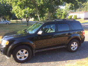 2011 Ford Escape XLT SUV, Crossover 4 cyl 2.5l  Gas Miser